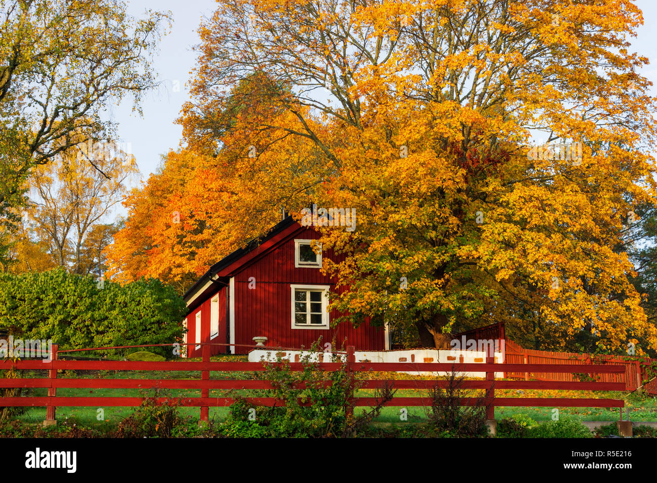 Traditional red farm house in Sigtuna's countryside, Marsta, Sweden. - Stock Image