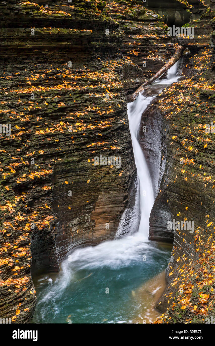 Pluto Falls, a narrow, curving waterfall in the Glen Arcadia section of Watkins Glen, splashes into a dark basin scattered with colorful autumn leaves Stock Photo