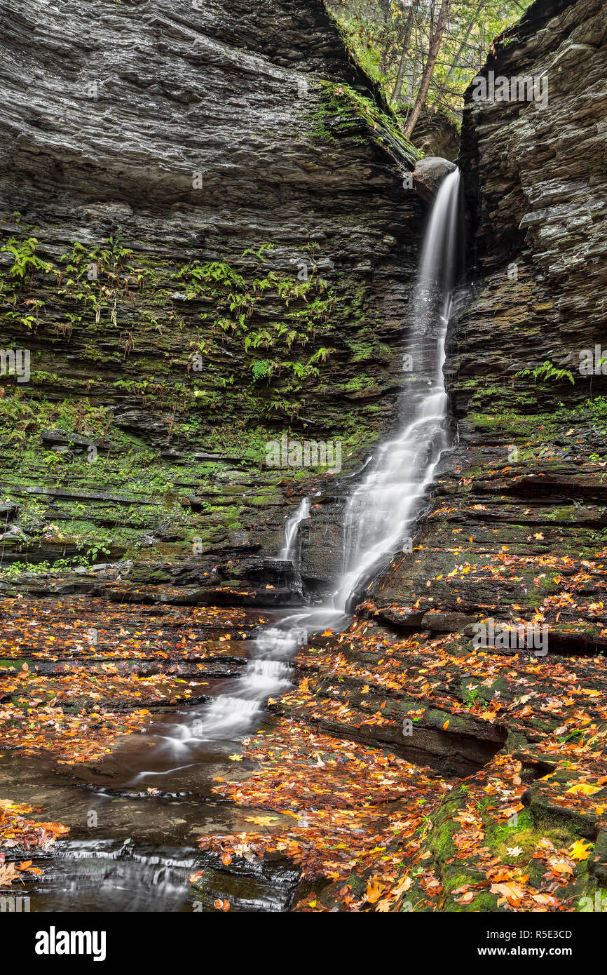 A slender tapestry of whitewater splashes down and autumn landscape at the Lower Falls of Excelsior Glen in the Finger Lakes Region of Upstate New Yor Stock Photo