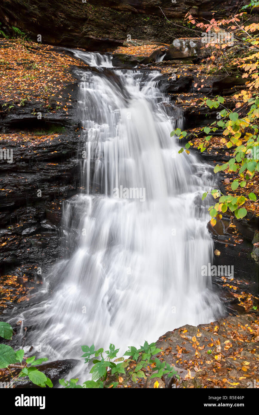 The top of Huron Falls, a beautiful waterfall in Pennsylvania's Ricketts Glen State Park, twists as it cascades down the rocky landscape of the park's Stock Photo