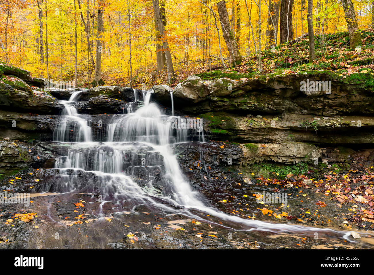 Tailwater Falls, a beautiful little waterfall in Owen County,  Indiana's Lieber State Recreation Area, cascades through a colorful autumn landscape. Stock Photo