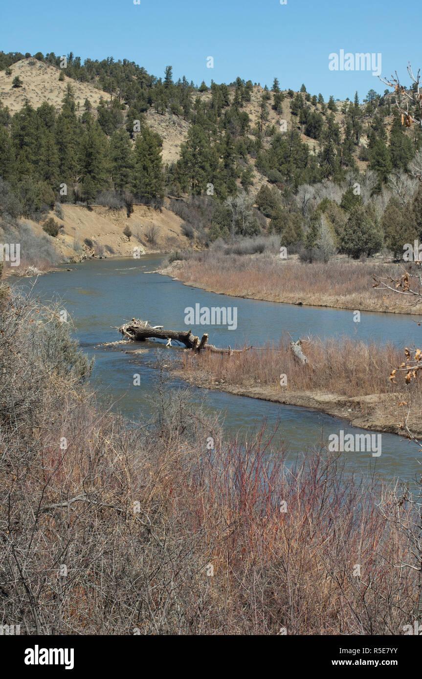 Piedra River, Southern Ute Reservation, Colorado. Digital photograph - Stock Image