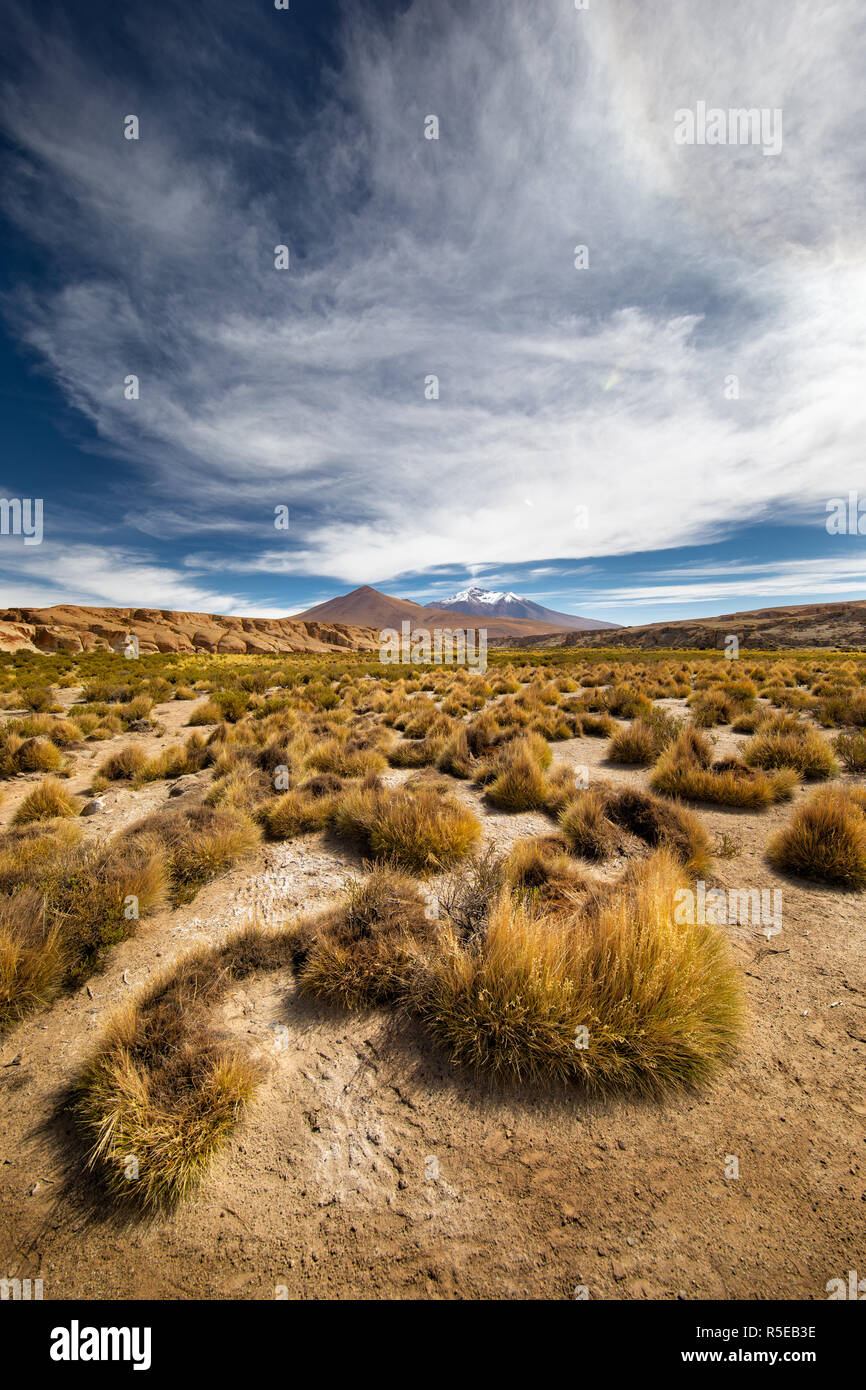 The bleak Landscape of the Eduardo Avaroa Andean Fauna National Reserve in the Potosi Department of Bolivia - Stock Image