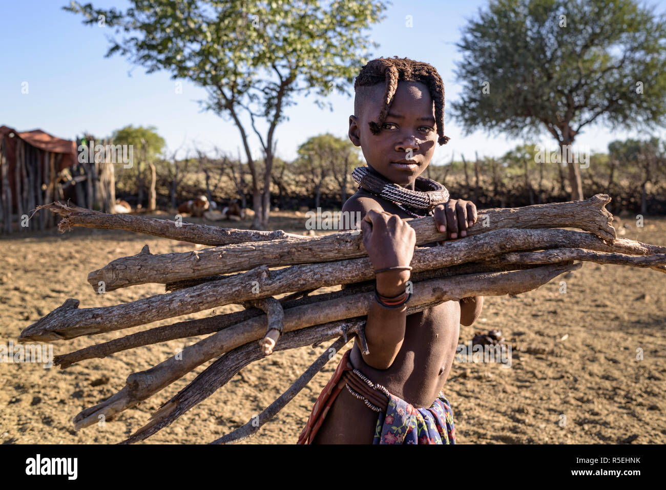 Young Himba girl collecting firewood in a village. - Stock Image