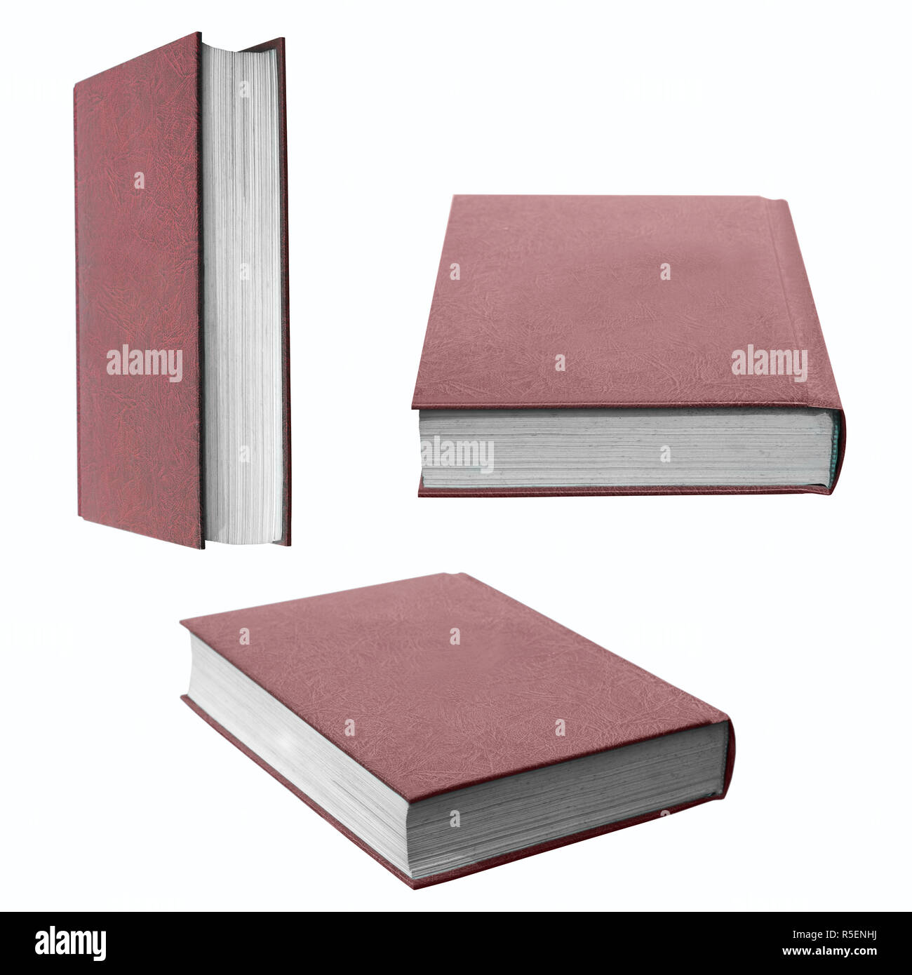 Collection Of Book Isolated - Stock Image