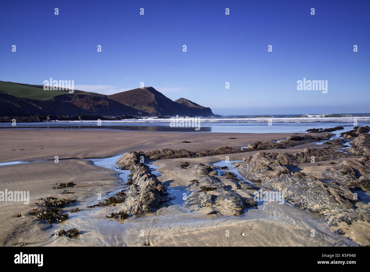 Crackington Formation, a geological feature at Crackington Haven in Cornwall, UK - Stock Image