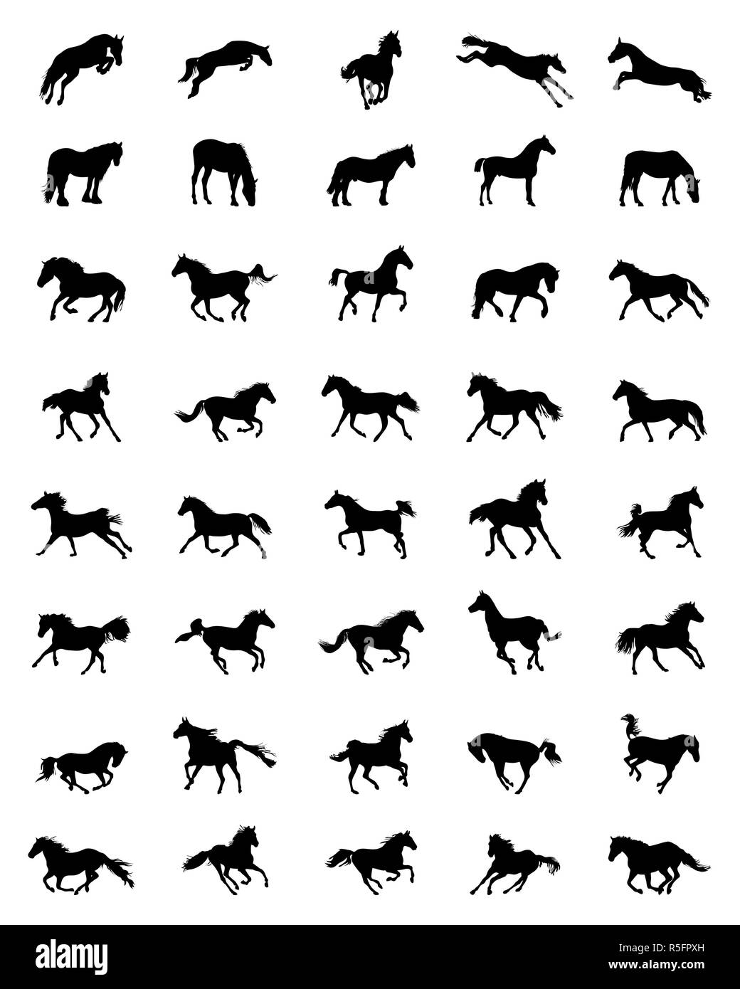 Black silhouettes of horses on a white background - Stock Image