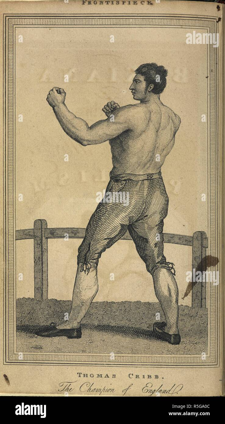 'Thomas Cribb. The champion of England'. Tom Cribb (8 July 1781 – 11 May 1848) was an English bare-knuckle boxer of the 19th century, so successful that he became world champion. He was a member of the International Boxing Hall of Fame. Boxiana; or, Sketches of Antient and Modern Pugilism. London, 1818-24. Source: 2270.e.8 volume 1, frontispiece. Author: EGAN, PIERCE. CRUIKSHANK, GEORGE. - Stock Image