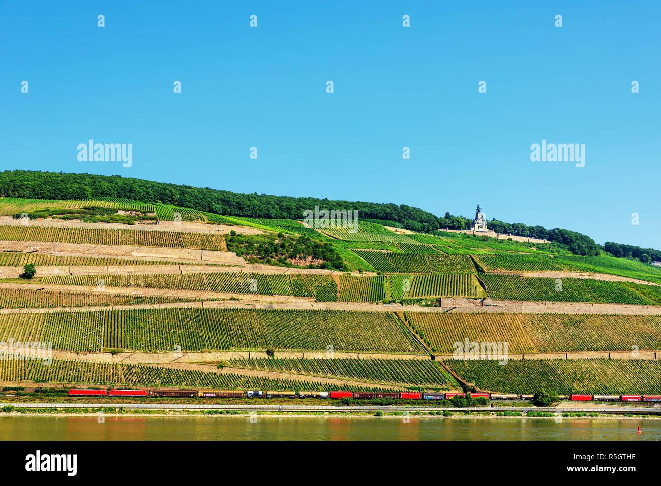niederwald monument rüdesheimer berg wine plant Stock Photo