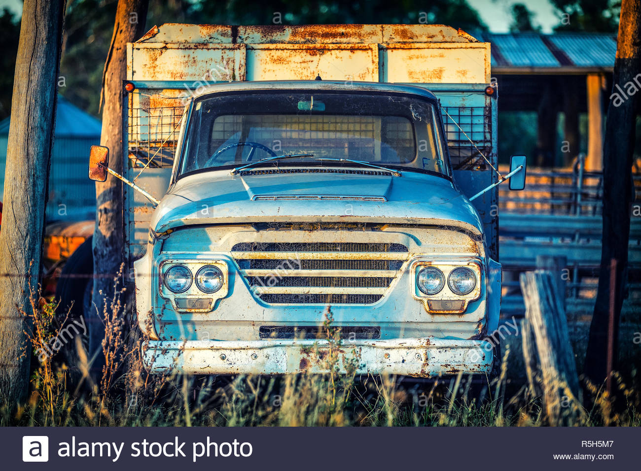 Old rusty blue farm truck in late afternoon light at sunset.  Central Victoria. - Stock Image