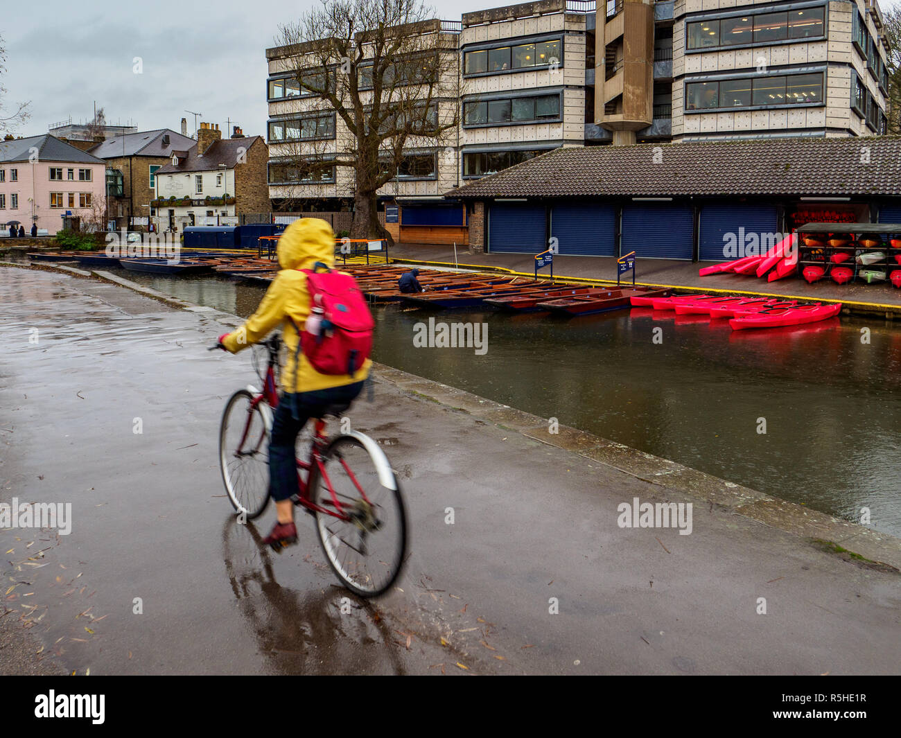 Cycling in the Rain next to the River Cam in central Cambridge UK - Stock Image