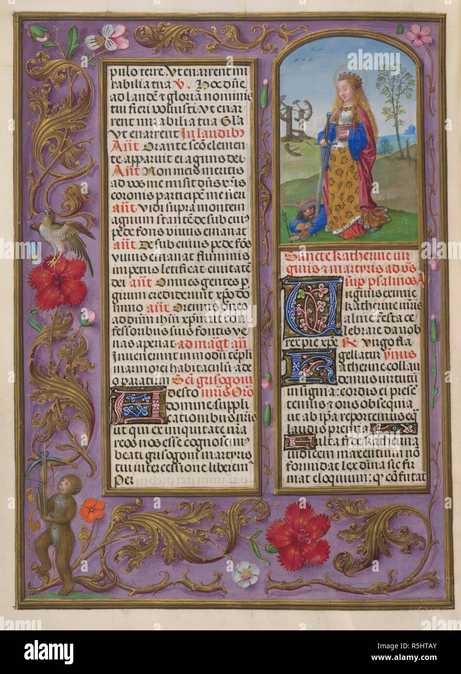 Sanctorale. St Catherine. Isabella Breviary. Breviary, Use of the Dominicans ('The Breviary of Queen Isabella of Castile'). c1497. Source: Add. 18851 f.495v. Author: Master of James IV of Scotland. - Stock Image