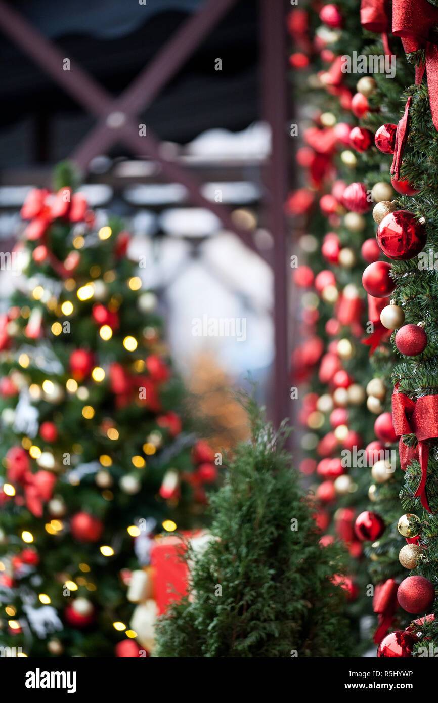 Decorated with red bows and balls Christmas trees. Shallow depth of field - Stock Image