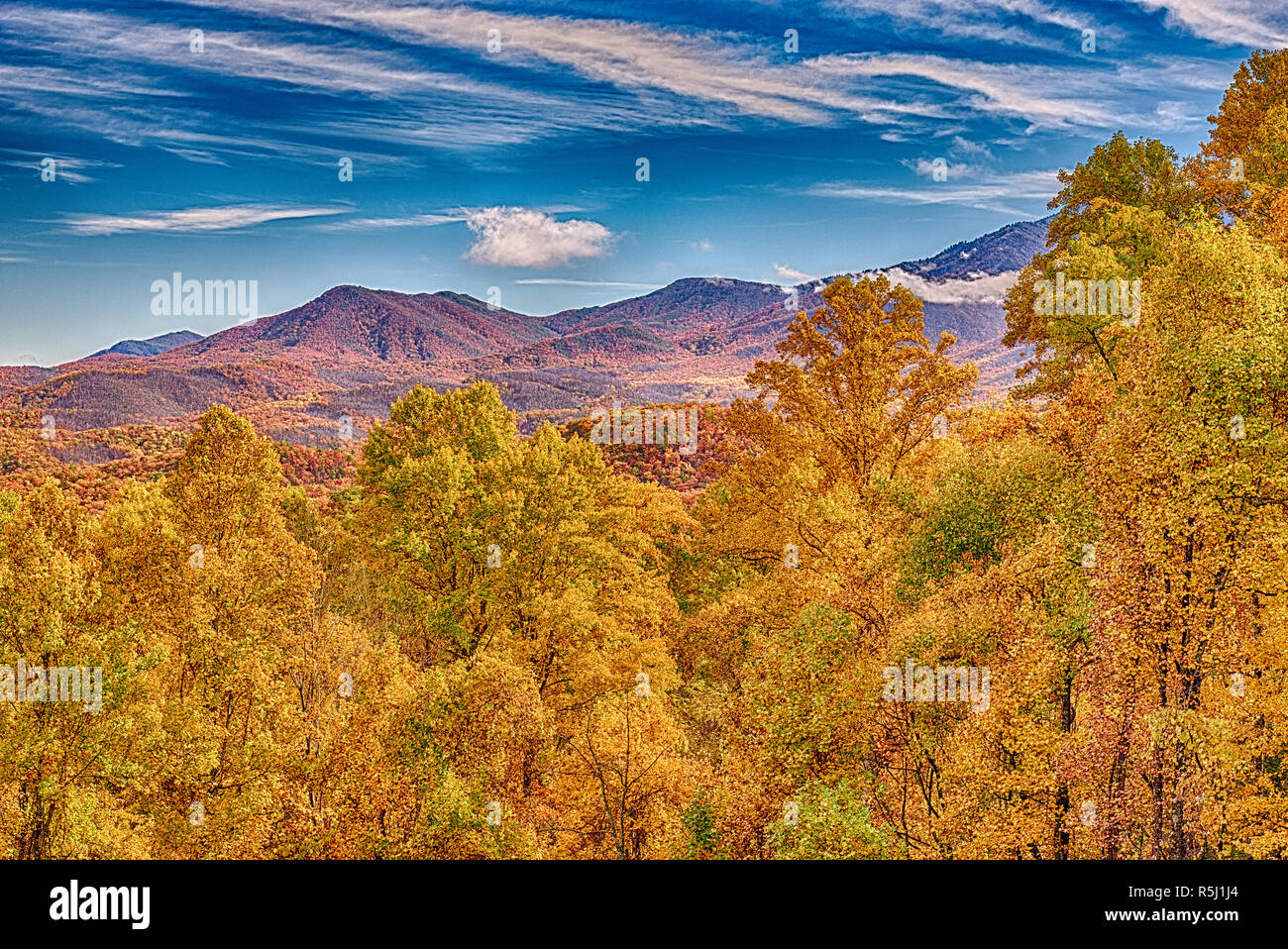 Horizontal shot of the beautiful fall colors in the Smoky Mountains under a rich blue sky with white clouds. - Stock Image