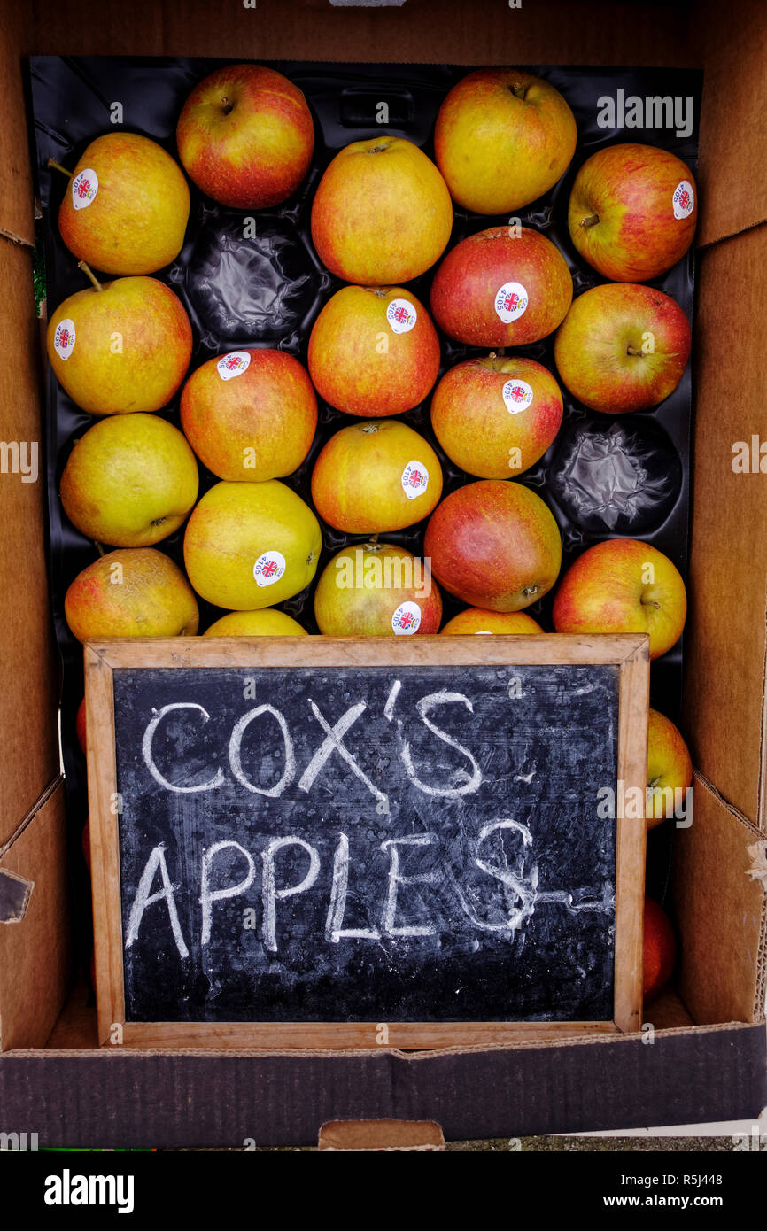 Box of Cox's Apples outside fruit shop. - Stock Image