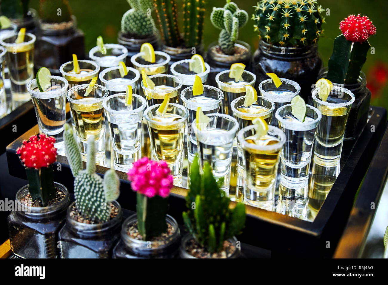 Page 2 Tequila Bottle High Resolution Stock Photography And Images Alamy
