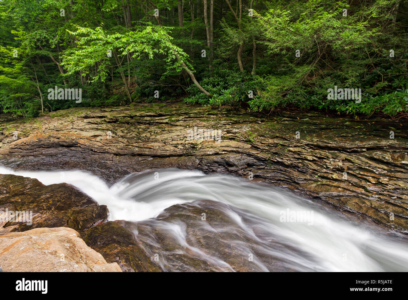 Whitewater flowing through Meadow Run has carved a narrow channel into the rock that is used  as a recreational water slide in the Pennsylvania Laurel Stock Photo