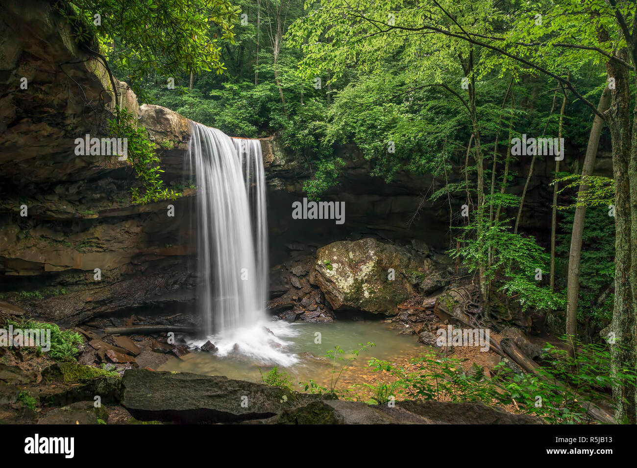 Cucumber Falls, a beautiful waterfall in Ohiopyle State Park plunges over a tall cliff in an Appalachian forest the Laurel Highlands of Pennsylvania. Stock Photo