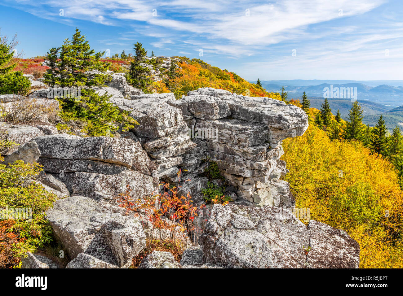 Colorful fall foliage adorns Bear Rocks at the Dolly Sods Wilderness in the Allegheny Mountains of West Virginia. - Stock Image