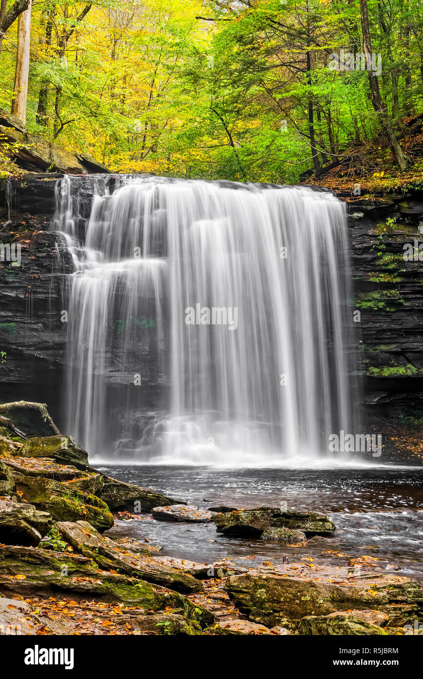 Harrison Wright Falls, a very beautiful plunging waterfall in Pennsylvania's Ricketts Glen State Park, is topped here by colorful autumn foliage. Stock Photo