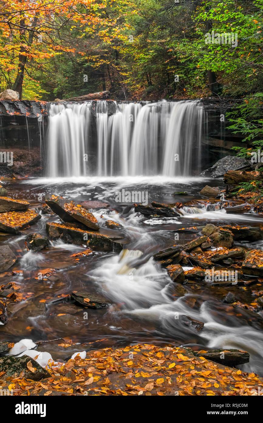 Oneida Falls, a beautiful waterfall in Ganoga Glen at Pennsylvania's Ricketts Glen State Park, flows through an autumn landscape. Stock Photo