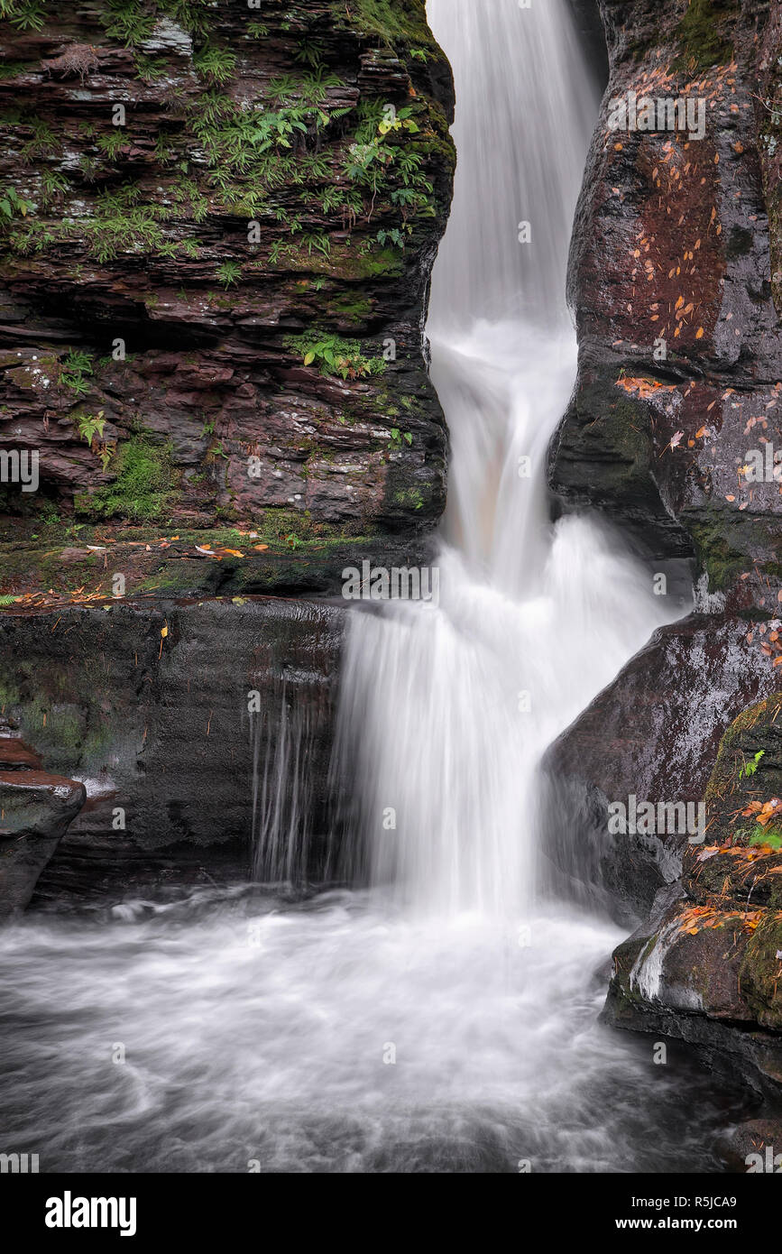 Adams Falls, one of many beautiful waterfalls in Pennsylvania's Ricketts Glen State Park, splashes through a rocky ravine. Stock Photo