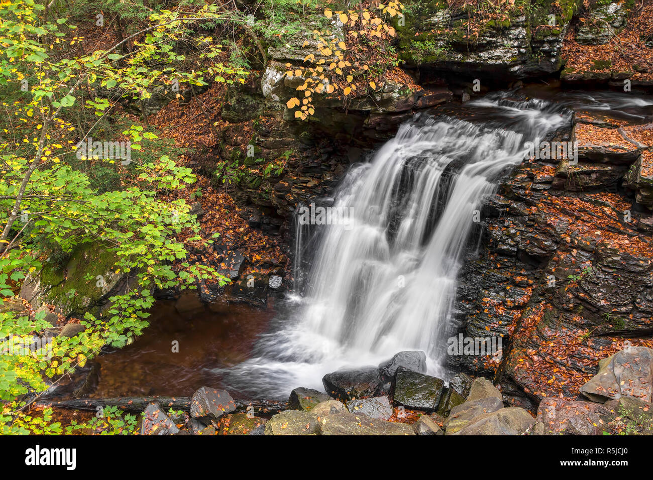 Big Run Falls splashes down a cliff in northeastern Pennsylvania on an autumn day. Stock Photo