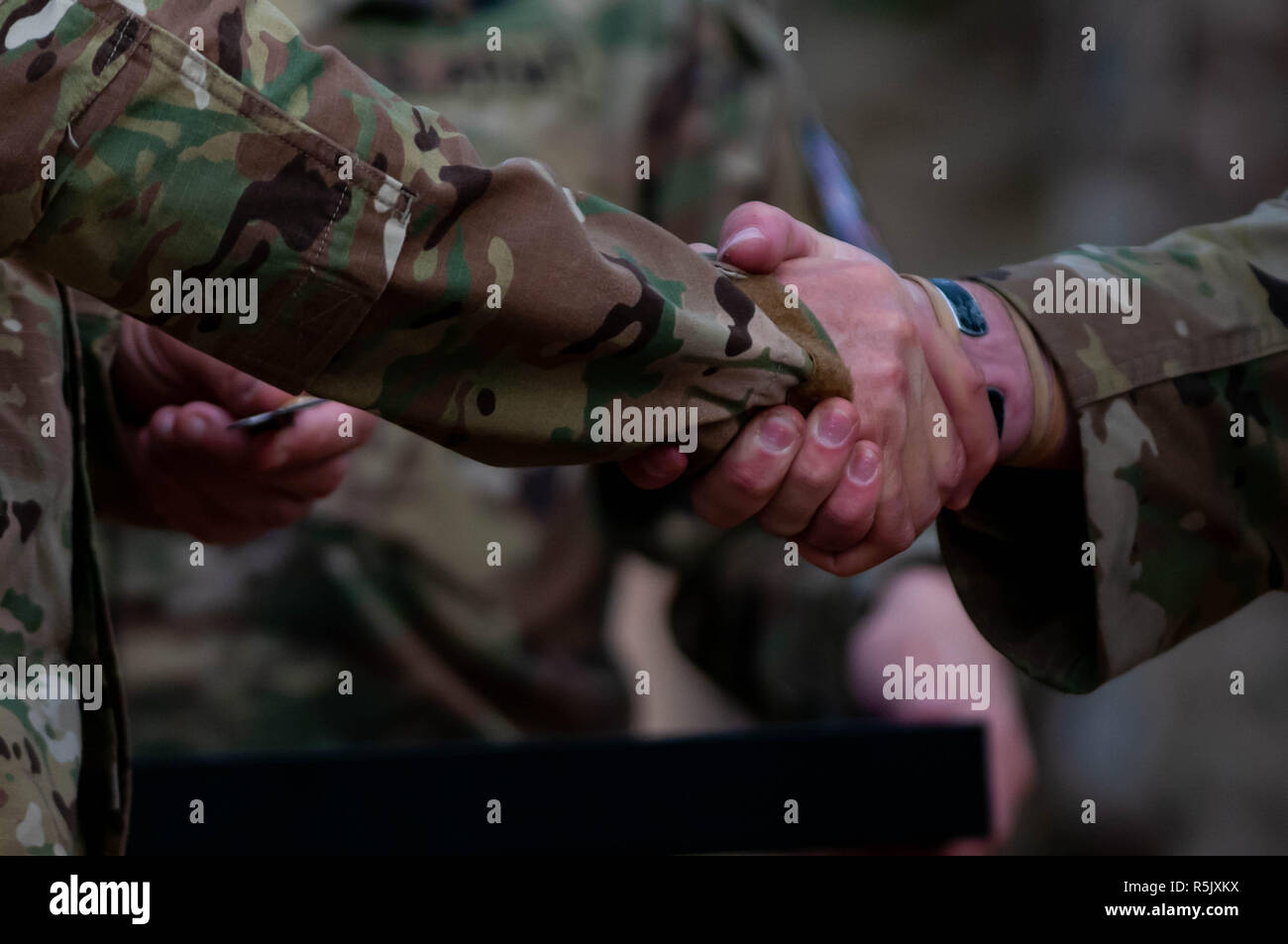 Royal Netherlands Army Stock Photos & Royal Netherlands Army