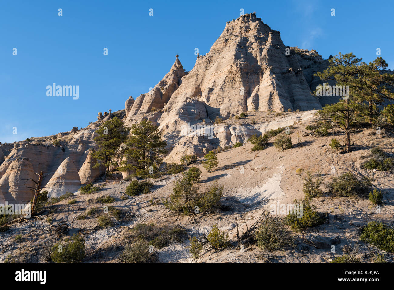 High, steep mountain peak with hoodoo rock formations and ponderosa pine trees at Kasha-Katuwe Tent Rocks National Monument, New Mexico - Stock Image