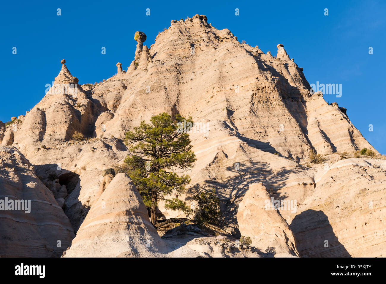High desert mountain peak with unusual hoodoo rock formations and ponderosa pine at Kasha-Katuwe Tent Rocks National Monument, New Mexico - Stock Image