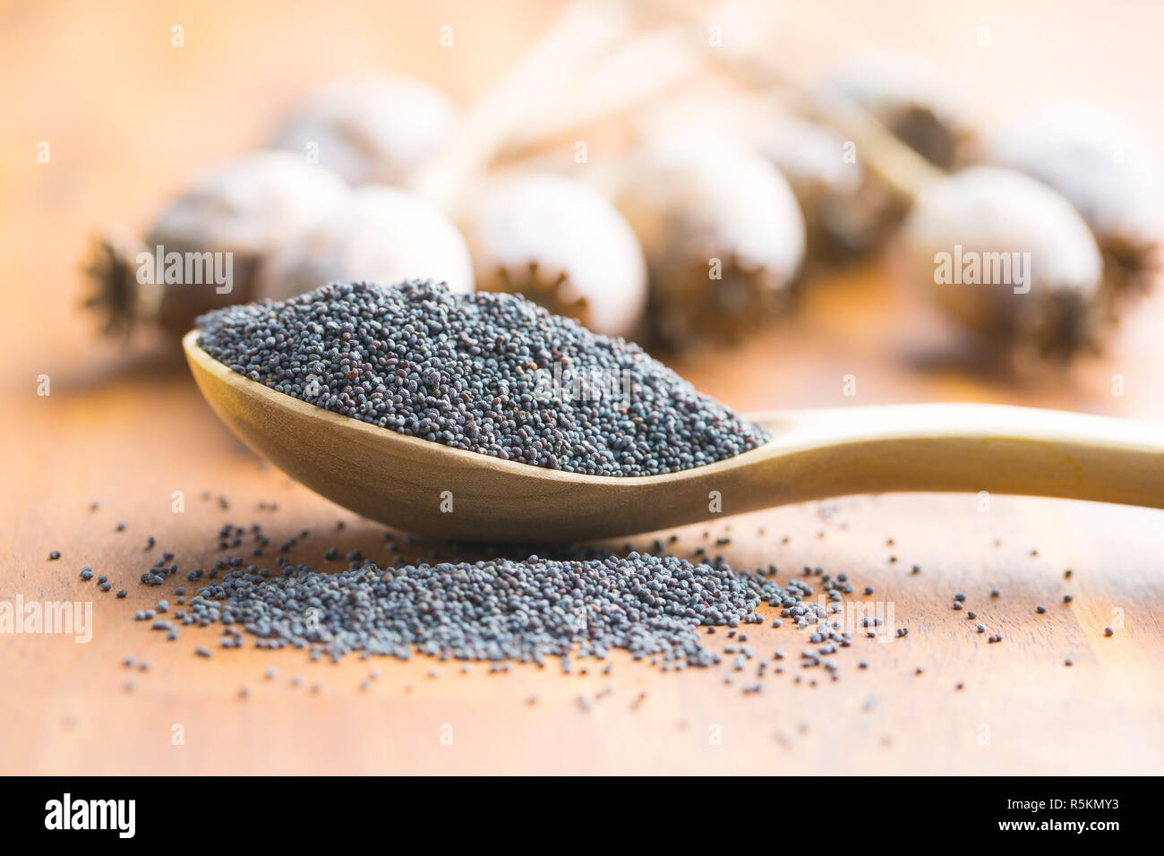 Dried poppy heads and seeds. - Stock Image