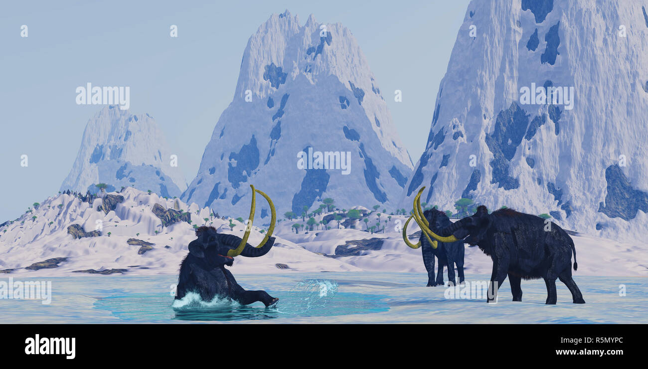 Woolly Mammoth in Danger - Stock Image