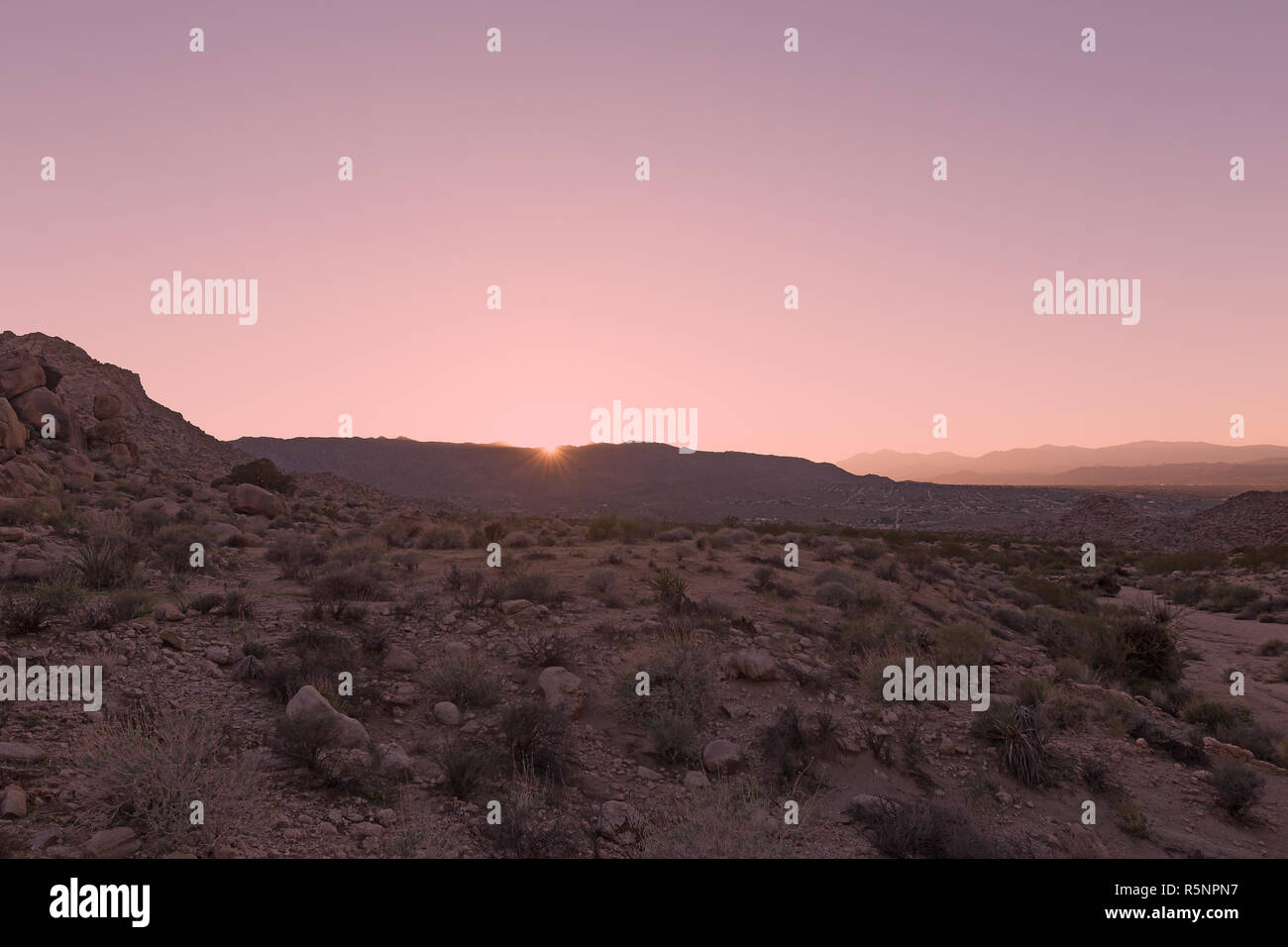 Stunning panorama of Mojave Desert at sunset. Rocky terrain with sparse vegetation and mountains chain on horizon. - Stock Image