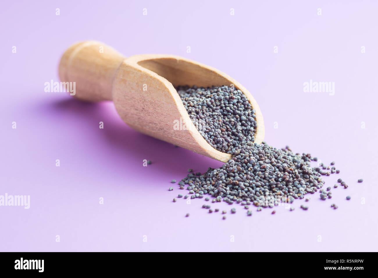 Blue poppy seeds. - Stock Image