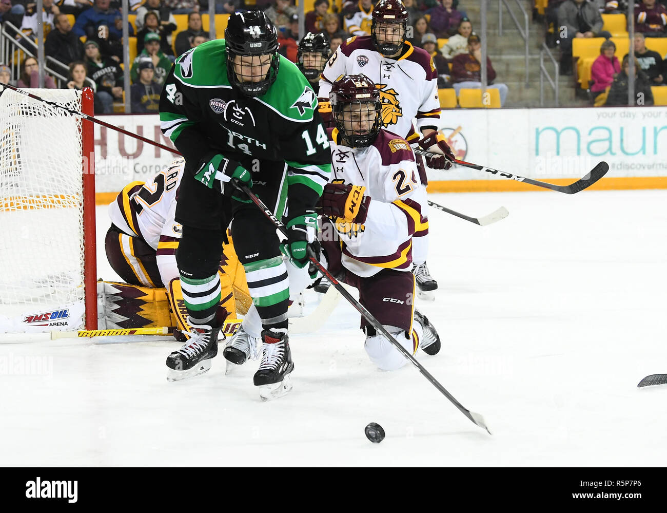 December 1, 2018 North Dakota Fighting Hawks forward Jasper Weatherby (14) and Minnesota-Duluth Bulldogs defenseman Mikey Anderson (24) race for the puck during a NCAA men's ice hockey game between the University of North Dakota Fighting Hawks and the Minnesota Duluth Bulldogs at Amsoil Arena in Duluth, MN. North Dakota won 2-1. Photo by Russell Hons/CSM - Stock Image