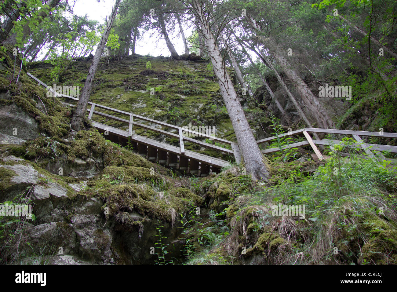 fastened walkway made of wood in wild nature without persons in the styria in the day - Stock Image
