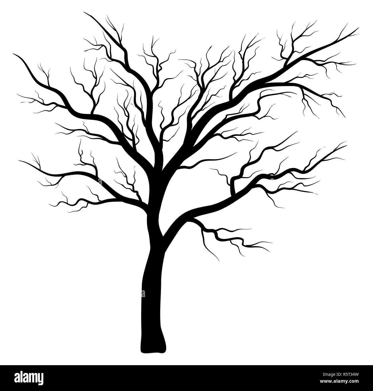 Bare Tree Clipart Stock Photos Bare Tree Clipart Stock Images Alamy
