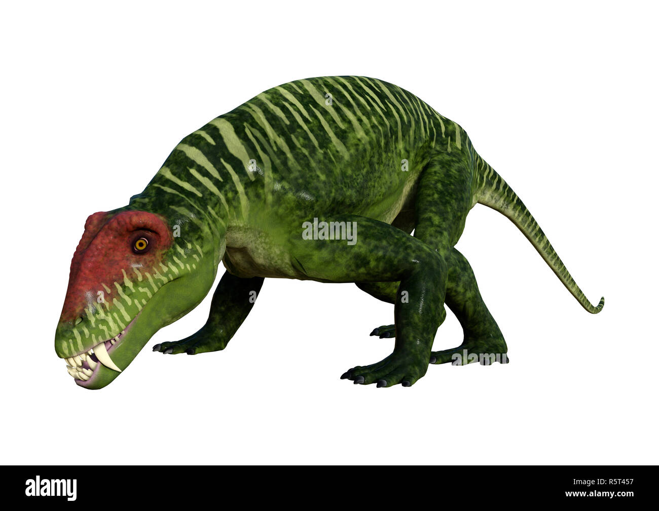 3D Rendering Dinosaur Doliosauriscus on White - Stock Image