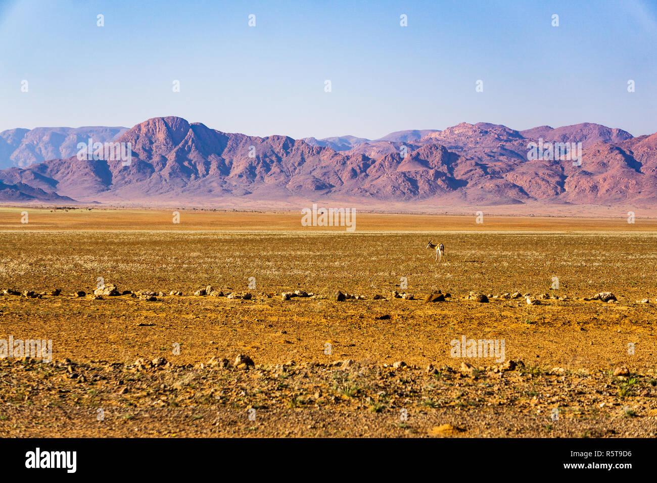landscape namibia desert d707 desert - Stock Image