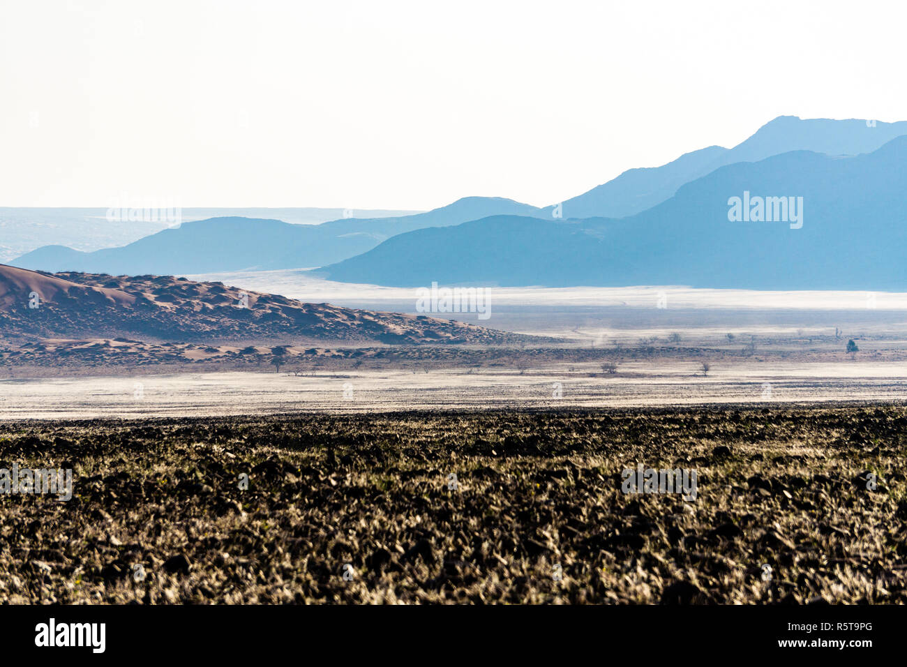 The D707 scenic dirt road in the desert through the Tiras mountains Namibia summer - Stock Image