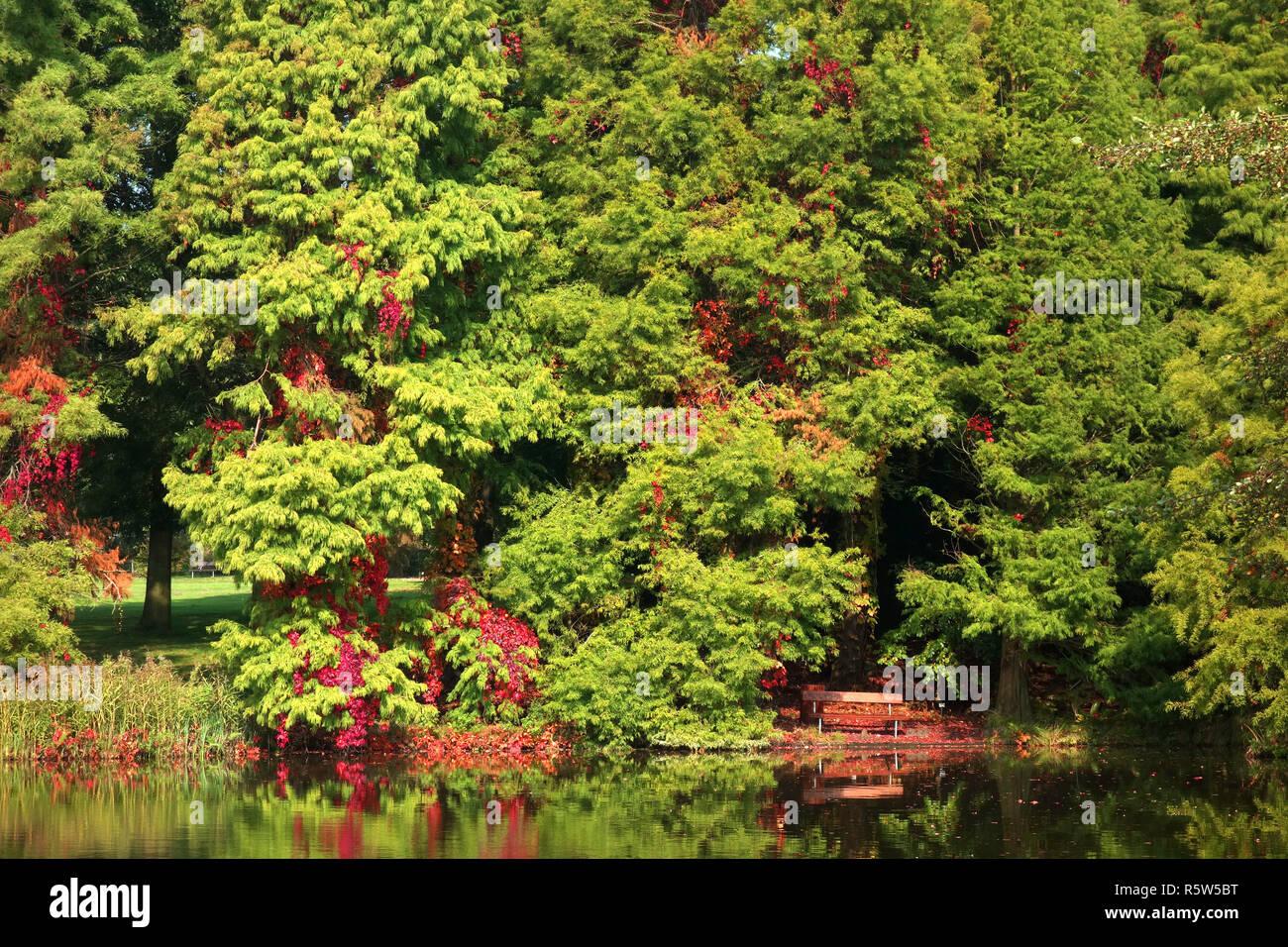 idyllic place on the lake Stock Photo
