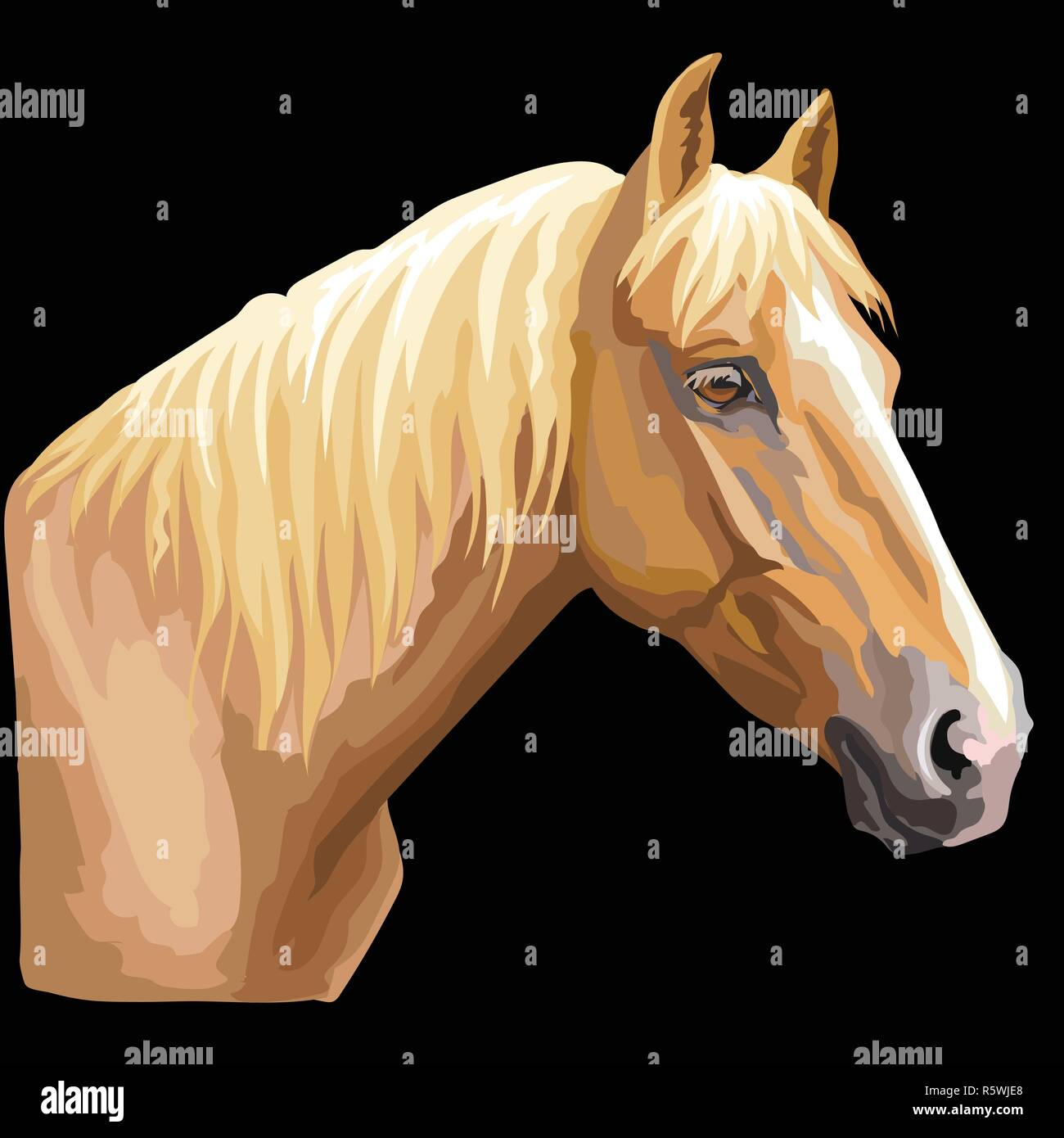 Colorful Portrait Of Palomino Horse Horse Head In Profile Isolated Vector Hand Drawing Illustration On Black Background Stock Vector Image Art Alamy