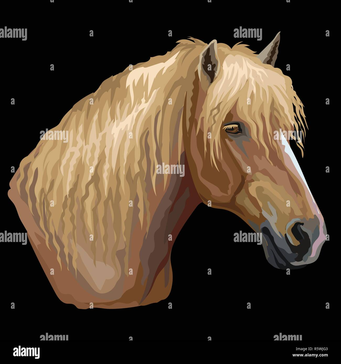 Colorful portrait of Russian Heavy Draft horse. Horse head  in profile isolated vector hand drawing illustration on black background - Stock Vector