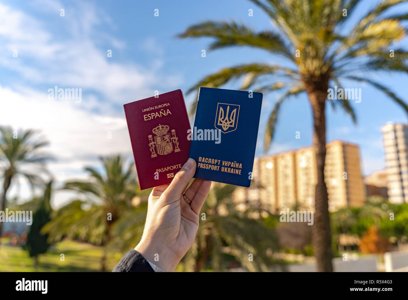Young woman holding both spanish and ukrainian travel passports. Big palm tree on the background.  Blue skyes. Double citizenship. Marriage. - Stock Image