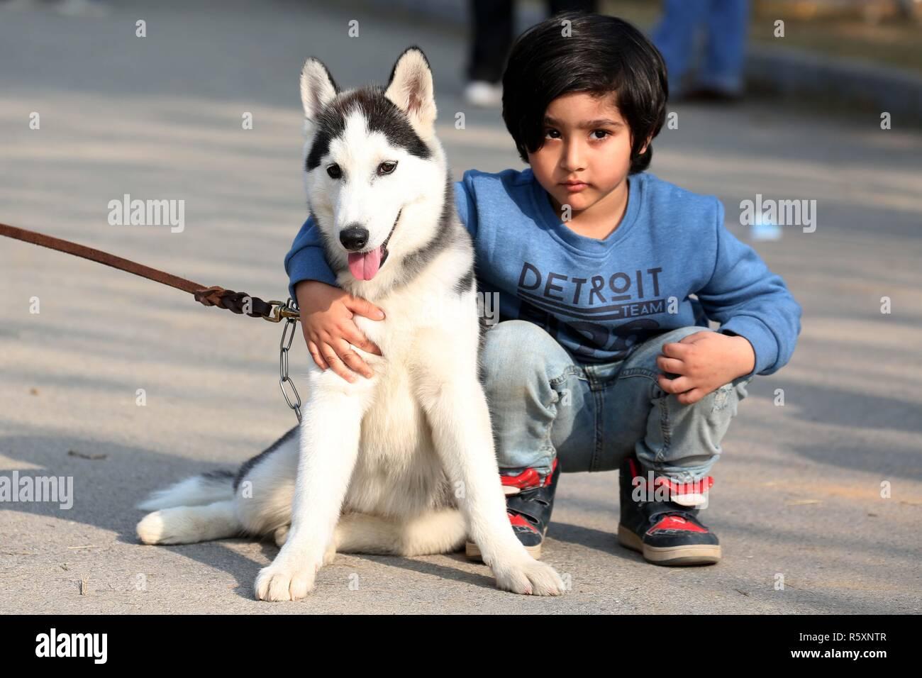 Islamabad, Pakistan  2nd Dec, 2018  A boy poses with a Husky