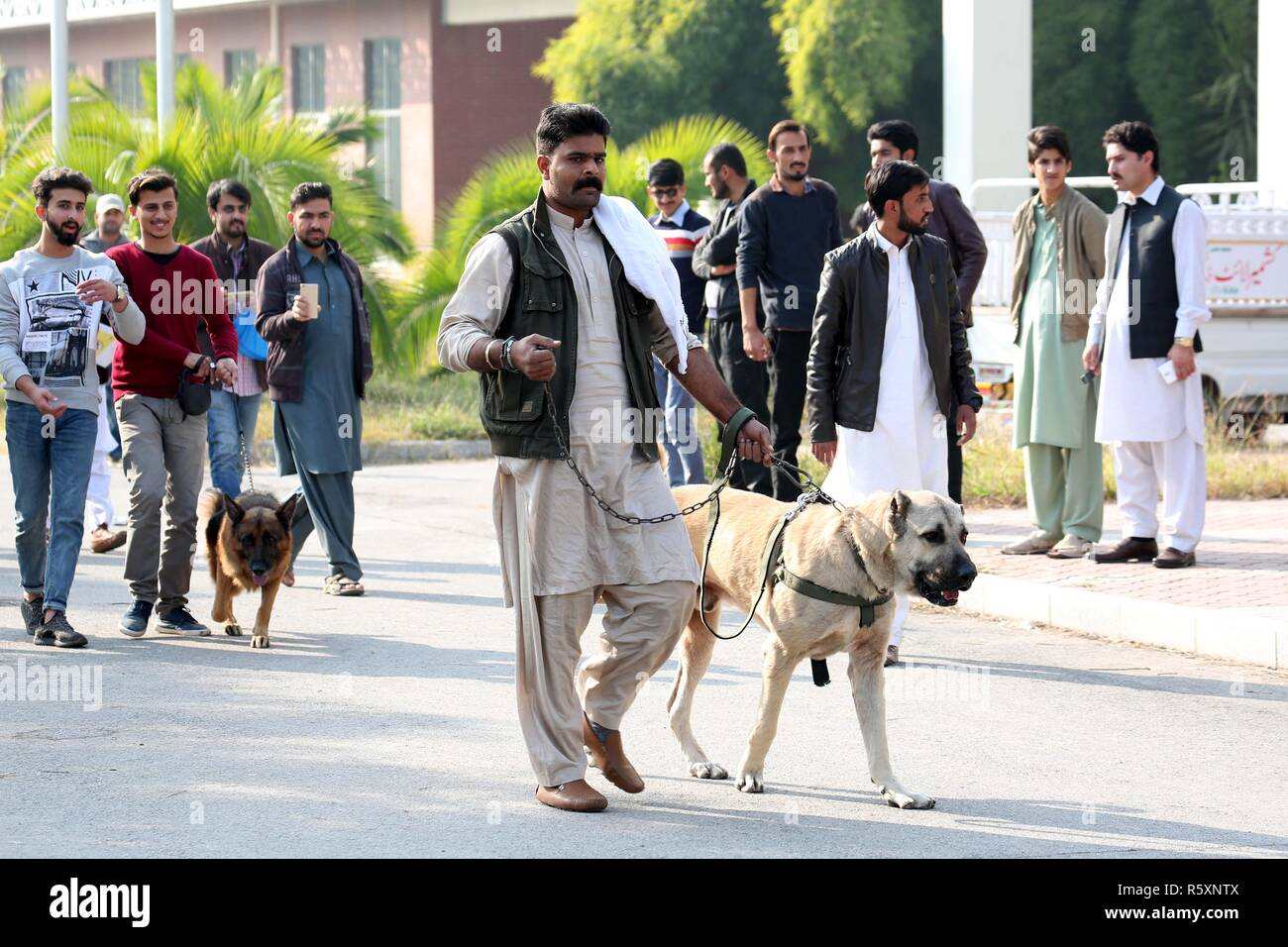 Islamabad, Pakistan  2nd Dec, 2018  Dogs and their owners