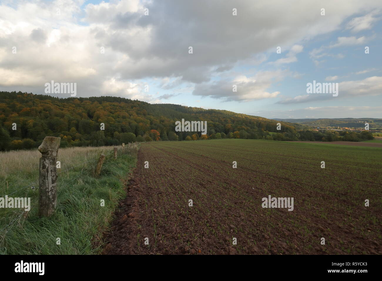 agriculture and fields in germany Stock Photo