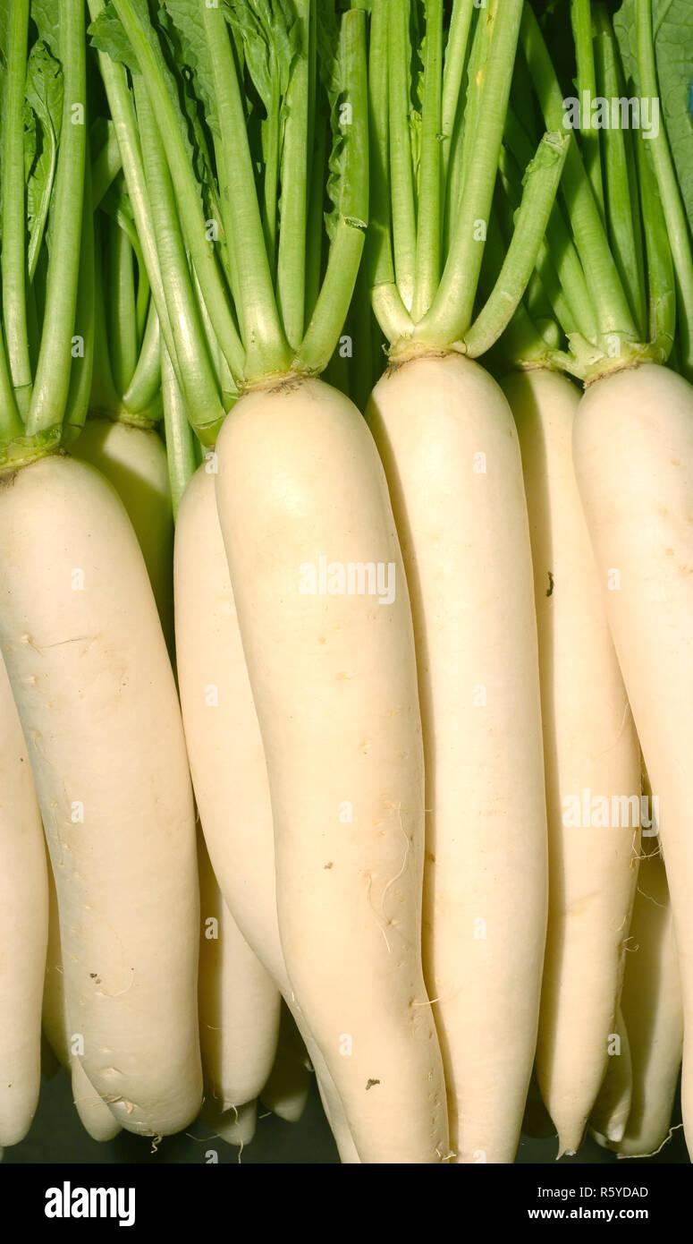 fresh radishes in market Stock Photo