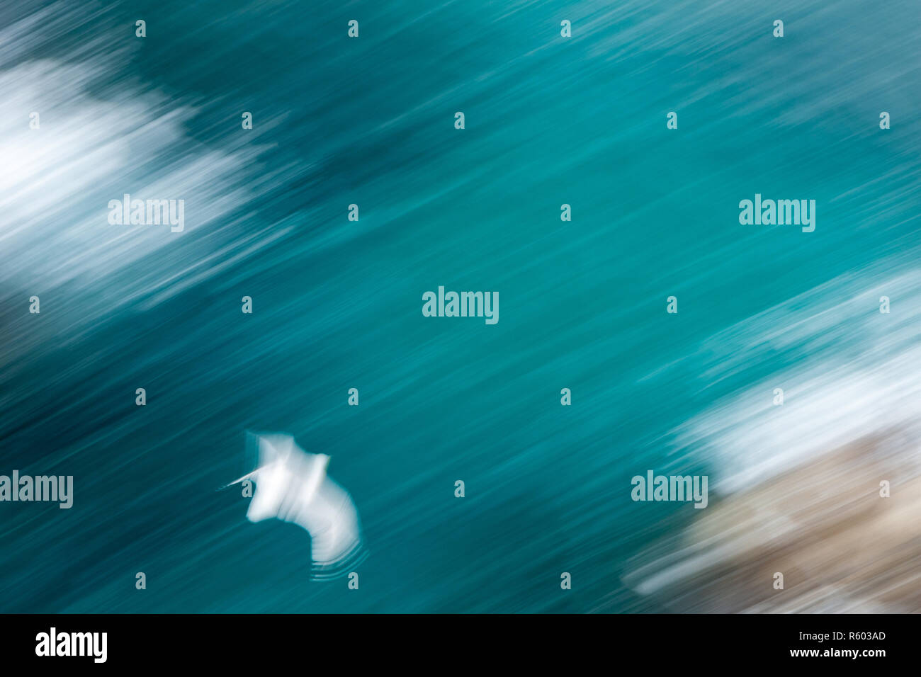 Abstract photo from a seagull from above, long exposure - Stock Image
