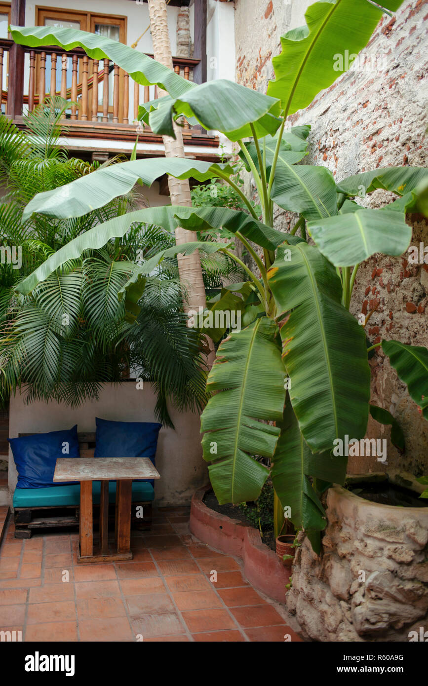 Tropical Patio Design With Old Wall Of Exposed Brick And A ...